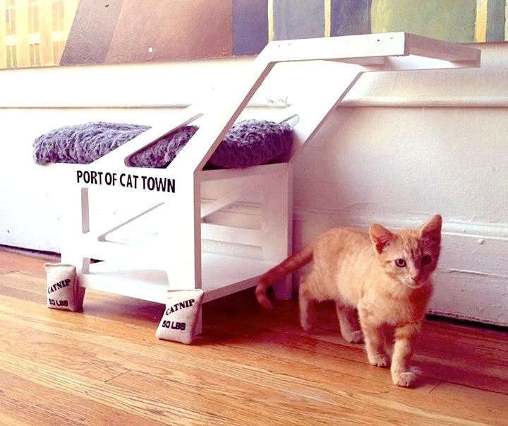 cat cafe architecture in california